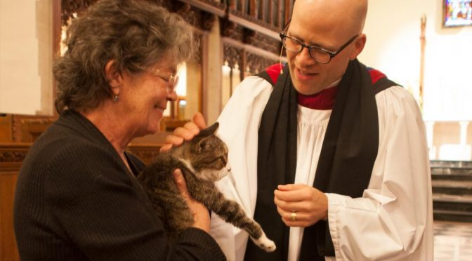 Blessing of the Animals at St. Paul's